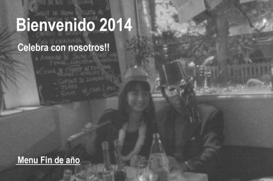 findeaño2013